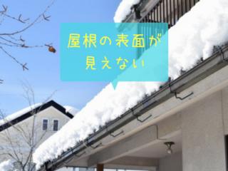 雪で屋根材が分からない